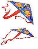Воздушный змей для малышей, BT-AK-0004, toys.com.ua
