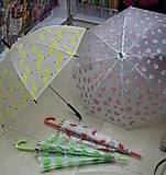 Зонт матовый с фруктами, 4 вида, CLG17218, фото