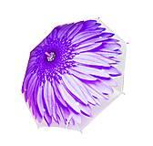 Зонтик сиреневый (с цветочком), BT-CU-0016, фото