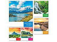 Тетрадь «Природа» на 24 листа в клетку (20 штук в упаковке), ТЕ91384, купити