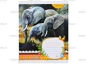 Тетрадь в клеточку: животные, монстрики и прочие пушистики. , Ц262058У, toys