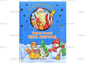 Книга рассказов «Волшебные истории Дедушки Мороза», С298004У, отзывы