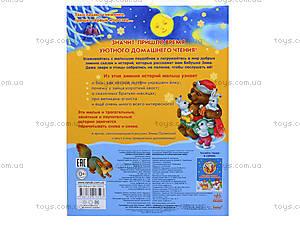 Зимние сказки и рассказы «Волшебные истории Бабушки Зимы», С298001Р, фото